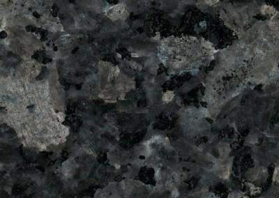 Labrador Bleu