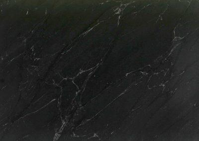 JURASSIC BLACK